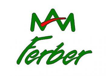 FERBER-CONS-XXI-Logo_